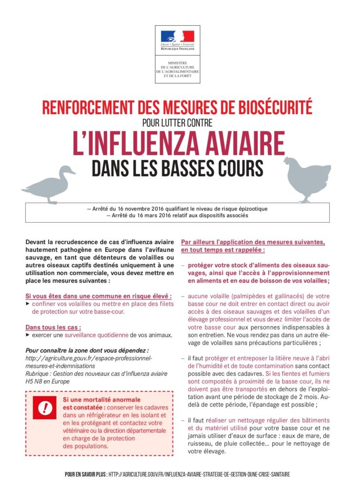 Renforcement des mesures de biosécurité pour lutter contre l'influenza aviaire dans les basses cours.